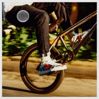 Biking (Solo) - Single - Frank Ocean mp3 download