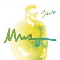 Shindy - NWA artwork