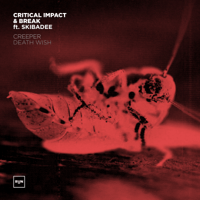 Death Wish (feat. Skibadee) Critical Impact & Break song