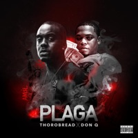 Plaga (feat. Don Q) - Single - Thorobread mp3 download