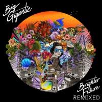 Brighter Future Remixed - Big Gigantic mp3 download