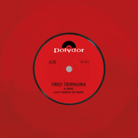 A Gira Trio Ternura