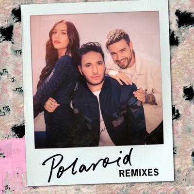 Polaroid (Zac Samuel Remix) - Jonas Blue Feat. Lennon Stella & Liam Payne mp3 download