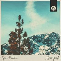 Springside Stan Forebee MP3
