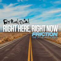 Right Here, Right Now (Friction One in the Jungle Remix) Fatboy Slim
