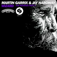 Wizard (Remixes) - EP - Martin Garrix & Jay Hardway mp3 download