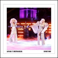 Do What U Want (feat. Christina Aguilera) - Single - Lady Gaga mp3 download