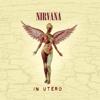 Nirvana - In Utero (20th Anniversary) [Remastered]  artwork