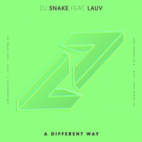 A Different Way (feat. Lauv) - Single - DJ Snake mp3 download