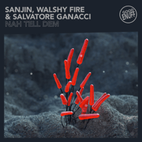 Nah Tell Dem Sanjin, Walshy Fire & Salvatore Ganacci MP3