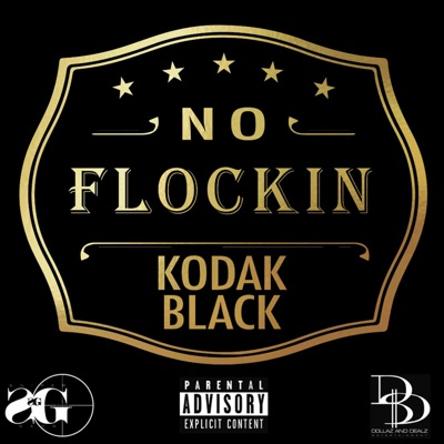 -No Flockin - Single - Kodak Black mp3 download