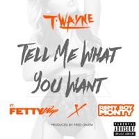 Tell Me What You Want (feat. Fetty Wap & Remy Boy Monty) - Single - T-Wayne mp3 download