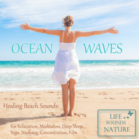 Big Sound of Ocean Waves For Meditation, Yoga, Relaxation Life Sounds Nature