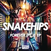 Forever, Pt. II (feat. Kaleem Taylor) Snakehips
