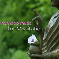 Vipassana Yoga Music Guru MP3