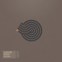 Devotion (Suduaya Remix) Liquid Soul