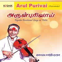 Manasa Sancharare Kunnakudi Vaidyanathan MP3