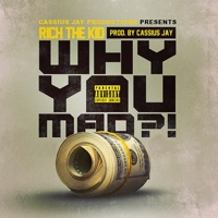 Why You Mad - Single - Rich The Kid & Cassius Jay mp3 download