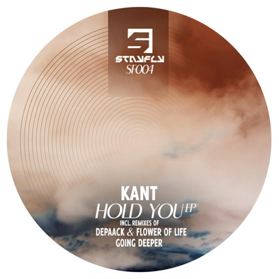 Hold You (Going Deeper Remix) - KANT mp3 download