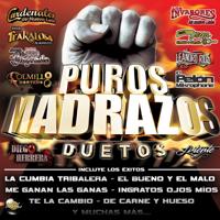 La Cumbia Tribalera (feat. Banda Trakalosa, Violento & DJ Morphius) El Pelon Del Mikrophone MP3