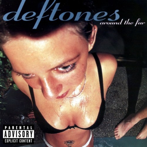 Bilderesultat for deftones around the fur