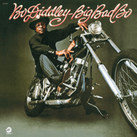 Hit or Miss Bo Diddley