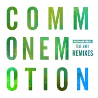 Common Emotion (feat. MNEK) [Remixes] - Single - Rudimental mp3 download