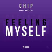 Feeling Myself (feat. Kano & Wretch 32) - Single - Chip mp3 download