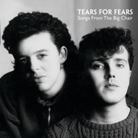 Everybody Wants To Rule the World Tears for Fears
