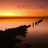 Breathe In & Breathe Out Peaceful Music Orchestra MP3