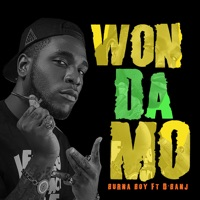 Won da Mo (feat. D'banj) - Single - Burna Boy mp3 download