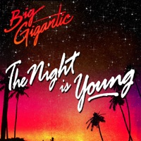 The Night Is Young - Big Gigantic mp3 download