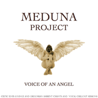 Voice of an Angel (Lord of the Folk Ambient Light Dance Mix) Meduna Project MP3