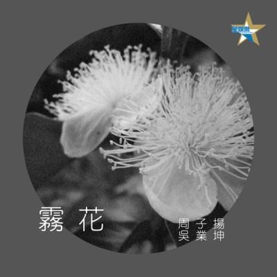 周子扬 & 吴业坤 - 雾花 - Single