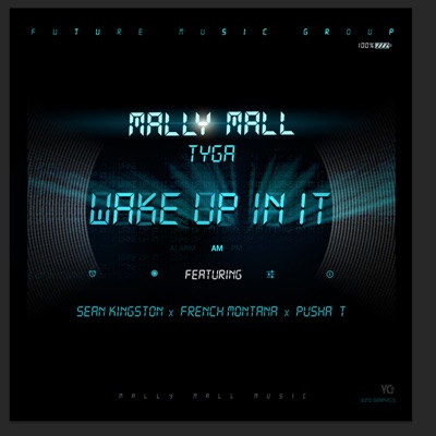 -Wake Up In It (feat. Sean Kingston, French Montana & Pusha T) - Single - Mally Mall & Tyga mp3 download