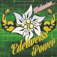 Heute rockt nicht nur Musik Edelweiss Power MP3