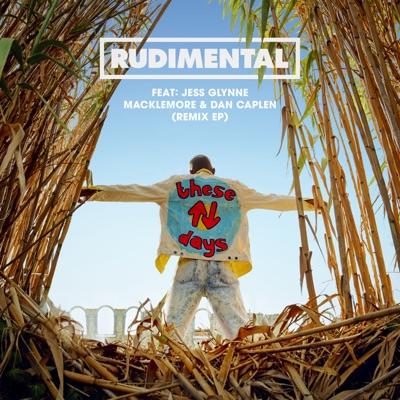 These Days (Griz Remix) - Rudimental mp3 download