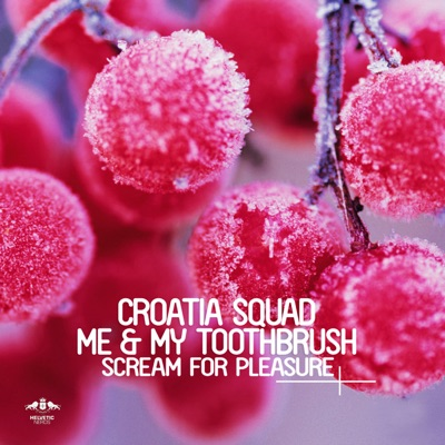 Scream For Pleasure (Original Mix) - Croatia Squad & Me & My Toothbrush mp3 download