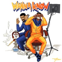 Wanna Know (Remix) [feat. Drake] - Single - Dave mp3 download
