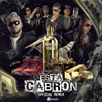 Está C****n (Remix) [feat. Anuel AA, Yomo, Pusho, Almighty, Dozi & Jamby el Favo] - Single - Ñejo & Gotay mp3 download