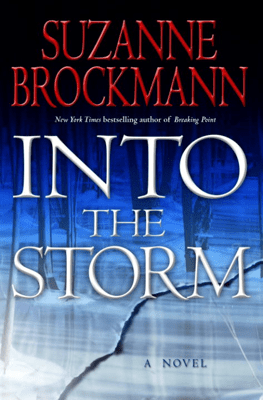 Into the Storm - Suzanne Brockmann pdf download
