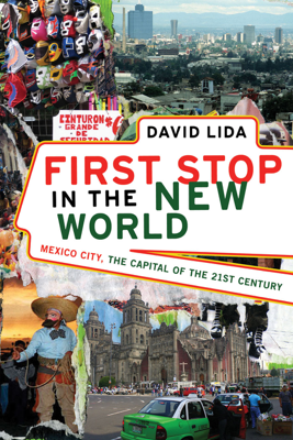 First Stop in the New World - David Lida