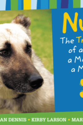 Nubs: The True Story of a Mutt, a Marine & a Miracle - Brian Dennis, Mary Nethery & Kirby Larson