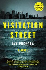 Visitation Street - Ivy Pochoda pdf download
