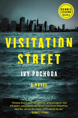 Visitation Street - Ivy Pochoda pdf download