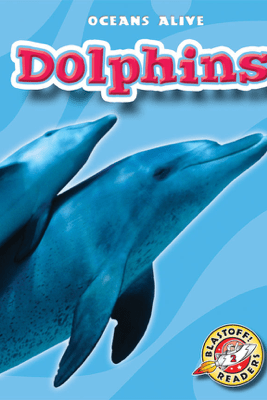 Dolphins - Ann Herriges