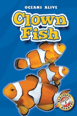 Clown Fish - Colleen Sexton
