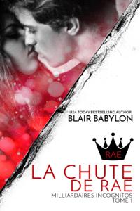 Milliardaires Incognitos - Blair Babylon pdf download