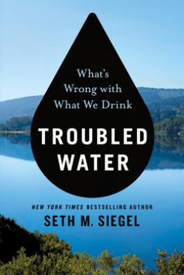 Troubled Water - Seth M. Siegel