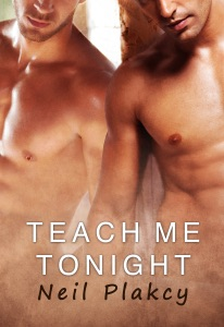 Teach Me Tonight - Neil S. Plakcy pdf download